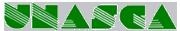 Unione Nazionale Autoscuole Studi Consulenza Automobilistica
